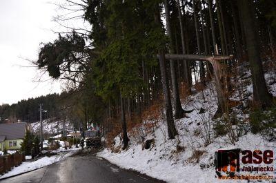 Obrazem: Pád stromu v Lučanech