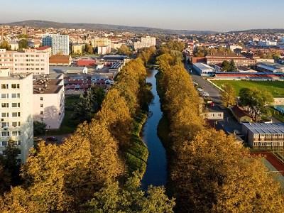 Alejí roku 2019 se stala památná alej u Rakovnického potoka