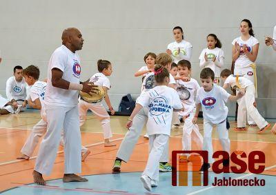 Seminář capoeiry proběhl úspěšně v jablonecké sportovní hale