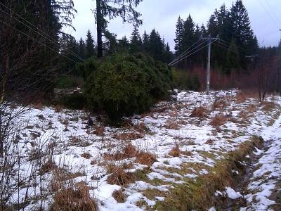 Přichází studená fronta a bouřky, ve vyšších polohách hrozí sněžení
