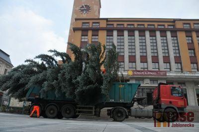 Obrazem: Vánoční strom 2013