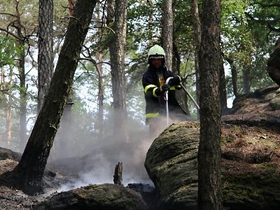 Hasiči varují před lesními požáry