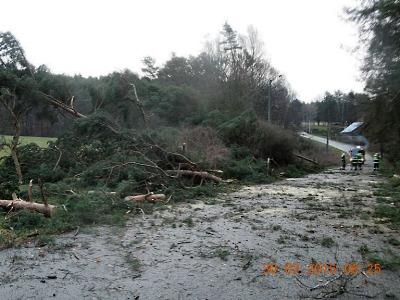 Hasiči zasahovali v kraji i na Jablonecku u popadaných stromů