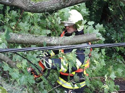 Hasiči po bouřce opět odstraňovali popadané stromy