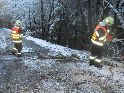 Hasiči vyjížděli k popadaným stromům, znovu vypadává elektřina