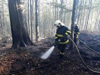 U Raspenavy hoří les, zasahuje 16 jednotek hasičů i vrtulník