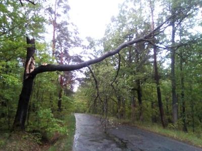 Silný vítr ničil střechy a lámal stromy i v Libereckém kraji