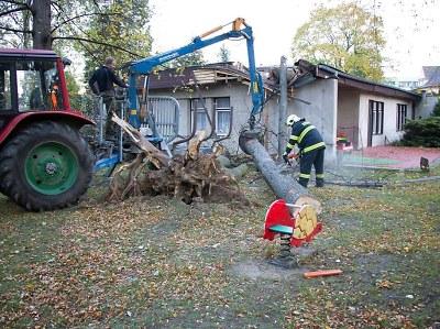 Kvůli silnému větru vyráželi hasiči k popadaným stromům