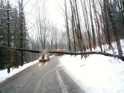 Těžký sníh lámal stromy, neprůjezdné byly silnice i železnice