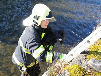Rychlá hasičská záchrana psa, který spadl do koryta Nisy
