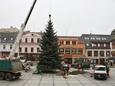 Vánočním stromem v Jablonci je smrk ze Smrkové ulice