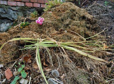 V březnu mohou Jablonečané požádat o kompostér