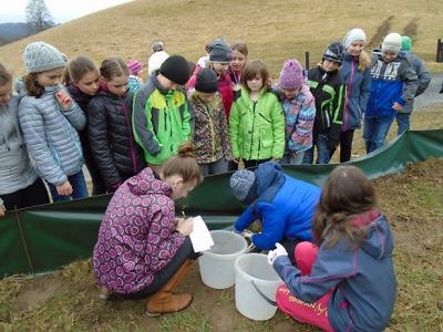 Mladí přírodovědci z Českého Dubu vyhodnocují své průzkumy