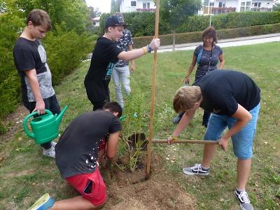 Nadace vyhlásila grantový program ekologické výchovy pro rok 2020