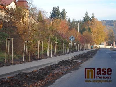 V Libereckém kraji stromů kolem silnic přibývá. Jinde se naopak víc kácí