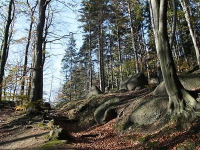 Oldřichovský Špičák láká na pomníček dřevorubce i skalní vyhlídky