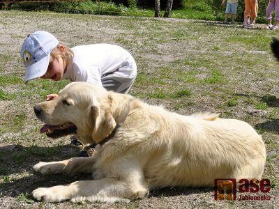 Děti si užívaly skoňmi, psy i při soutěžích
