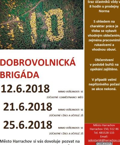 V Harrachově organizují brigády pro vytvoření modřínové stovky