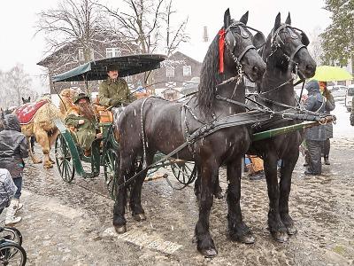 Příjezd Krakonoše do Harrachova letos provázelo sněžení