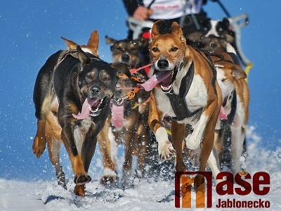 Šampionát v závodech psích spřežení 2020 v Zásadě ruší teplá zima