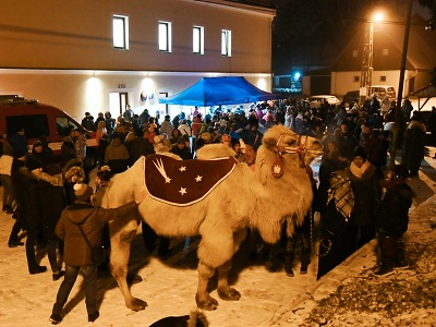 V Rádle přivítali advent a rozsvítili vánoční strom i s velbloudem