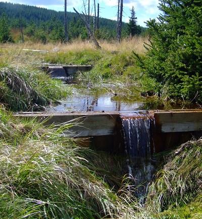 Pomozte díky sportování obnovit rašeliniště v Jizerkách