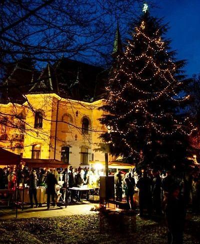 Videoohlédnutí: Adventní neděle u Riedelovy vily v Desné