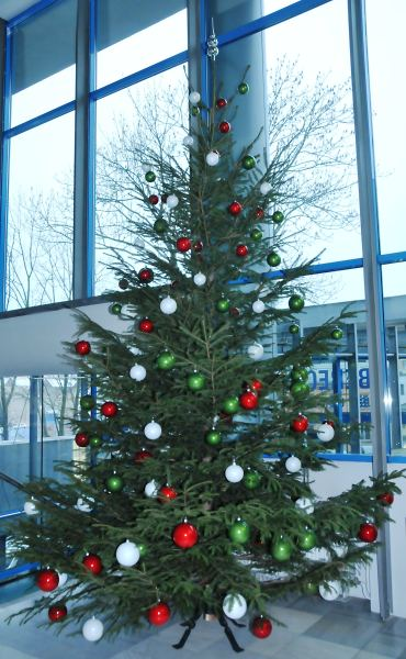 Soutěžte na facebooku Libereckého kraje o nejhezčí vánoční stromeček