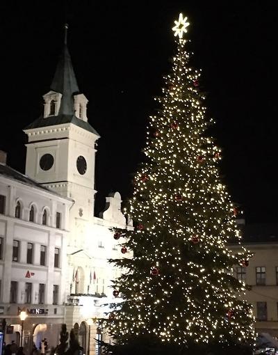 Anketa: Nejhezčí vánoční strom 2019 mají v Turnově, druhý je v Zásadě
