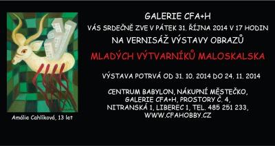 V liberecké galerii uvidíte výstavu Mladých výtvarníků Maloskalska