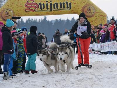 Mistrovství republiky vzávodech psích spřežení se koná opět v Zásadě