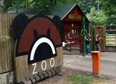 Gorilí den připravili v liberecké zoo