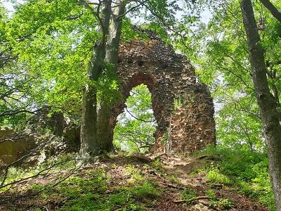 Zřícenina hradu Bradlec u Lomnice: místo, které stojí za návštěvu