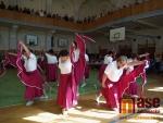 Akademie Pozdrav XV. Všesokolskému sletu, konané v sobotu 12. května 2012 v jablonecké Sokolovně.
