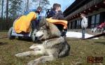 Jana Lovette Henychová při návštěvě ve Výtvarném centru Sněženka ve Smržovce