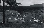 Bedřichov - obec zrozená ze sklářské huti
