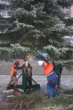 Jablonec má vánoční strom číslo 2, už bez slavnostního rozsvícení