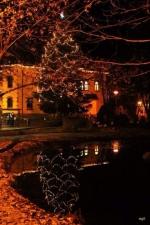 V neděli rozsvítili Riedelovu vilu a vánoční strom v Desné