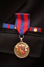 Medaile zasloužilý hasič