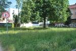 Park před úklidem