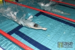 Obrazem: Velká cena Jablonce n.N. v plavání