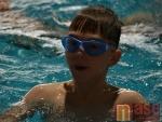 12. Jablonecký plavecko-běžecký duatlon