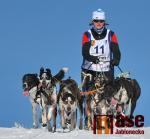 Obrazem: Mistrovství republiky v závodech psích spřežení v Zásadě