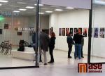 Obrazem: Výstava Vodezdikezdismus v Galerii OC Central