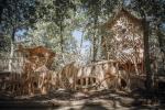 Park Mirakulum: Tajemství zrodu