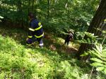 Policisté našli pohřešovaného muže v Besedicích už bez známek života
