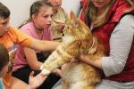 Příměstský tábor nejen pro neslyšící děti nazvaný Dobrodružství s přírodou