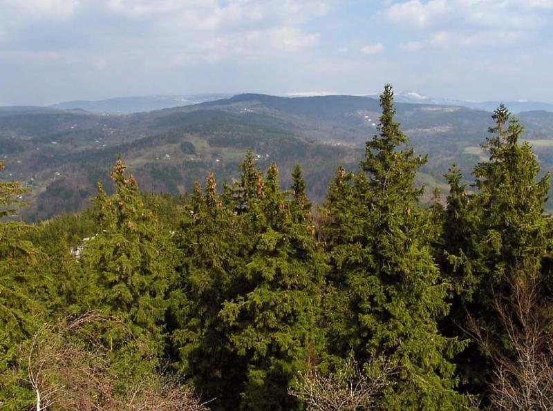 Vyhlídka zvaná Terezínka, která se nalézá na úbočí hory Muchov blízko Tanvaldu<br />Autor: Archiv KÚ Libereckého kraje