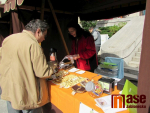 Podzimní slavnosti v Jablonci nad Nisou 2019