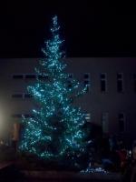 Rozsvícení vánočního stromu na ZŠ Liberecká